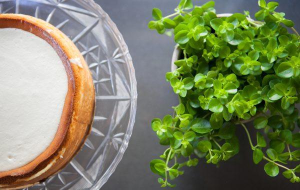 צילומי מזון – צלמת: ענת פייזר